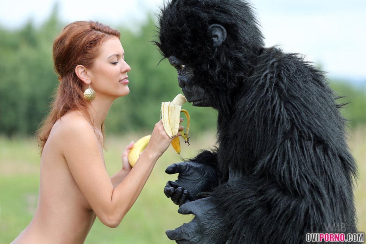 Секс с горилой